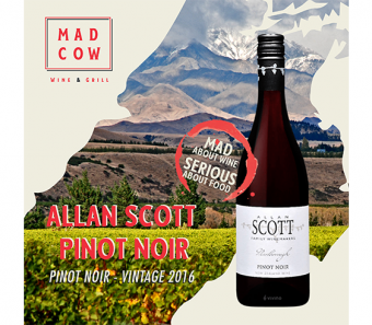 maddies-fav-allan-scott-pinot-noir-2016