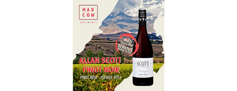 maddies-fav-allan-scott-pinot-noir-2016